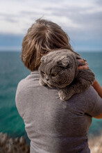 A Noble, Serious Cat Lies On A Woman's Shoulder. Scottish Fold Cat-a Short-eared Scottish Fold Cat With Gray-blue Fur On The Background Of The Sea.