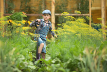Boy In Denim Overalls And A Cap Dig The Beds In The Garden