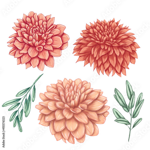 Leinwand Poster Elegant peach colored dahlias, summer dahlias, wedding flower bouquets, eucalipt