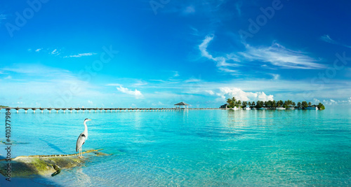 Beautiful tropical landscape with turquoise ocean and blue sky with light clouds on summer day Poster Mural XXL