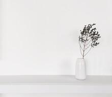 Sucha Gałązka W Białym Wazonie Stojąca Na Półce Na Tle Białej ściany
