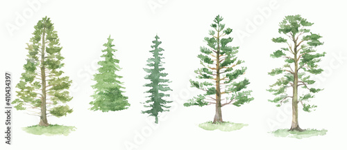 Obraz Green pine trees watercolor set. Fir trees silhouette. Forest - fototapety do salonu