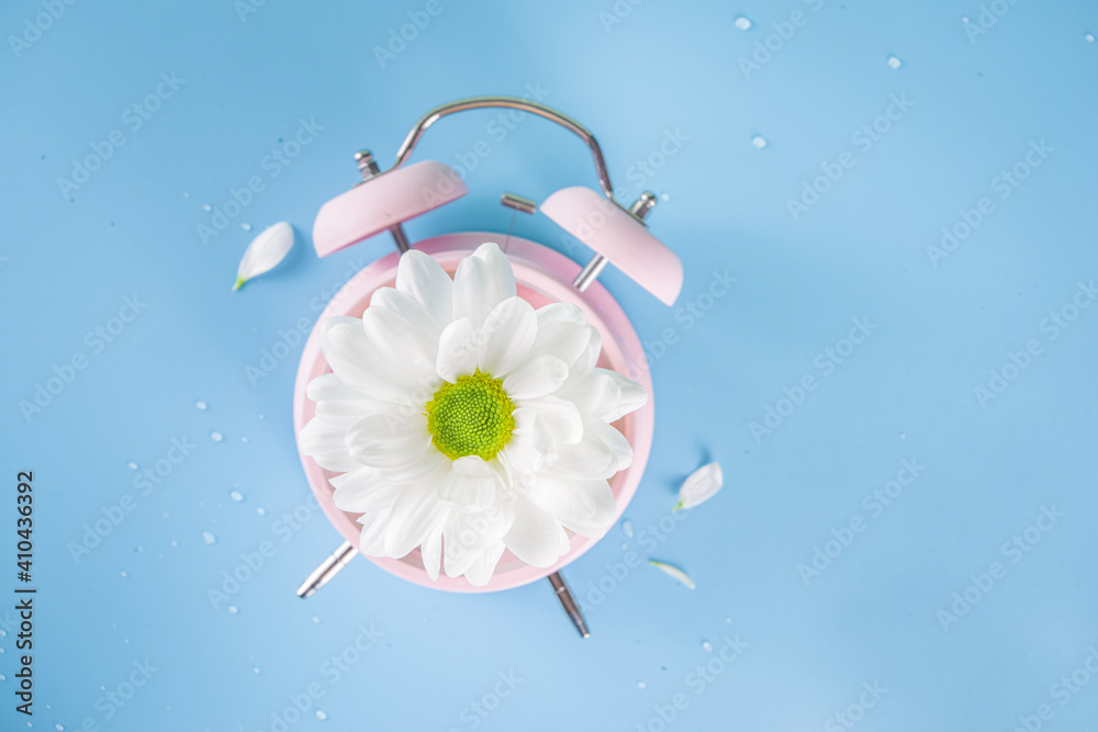 Fototapeta Spring Time Change flatlay. Summer back concept. Retro Vintage alarm Clock with fresh, beautiful white spring daisy flower on pastel blue background top view copy space