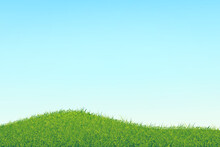 Sky With A Soft Gradient And Abstract Chaotic Grass.