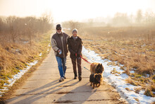 Senior Couple Walking With Dogs In Winter
