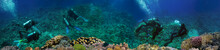 Coral Reef Underwater Panorama With Group Of Scuba Divers Exploring Coral
