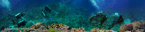 Fotografie, Obraz Coral reef underwater panorama with Group Of Scuba Divers Exploring Coral