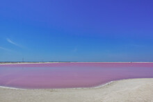 Amazing Pink Salt Lake Under Clear Blue Skies. On The Mirror-smooth Surface Of The Water - Reflection. White Sand On The Shore. Salt Crystal Deposits On The Edge Of The Coastline. Mexico. Rio Lagartos