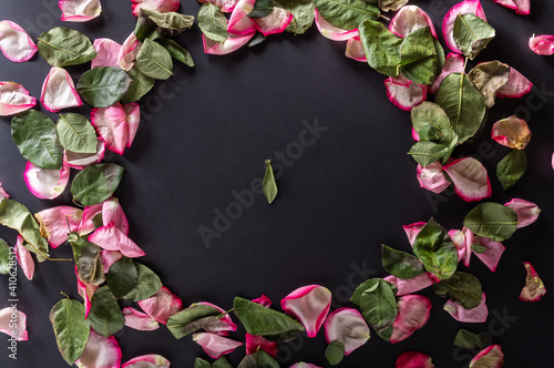 Obraz A circle of rose petals. Screensaver for writing. Place to write text. Top. Flat lay. - fototapety do salonu