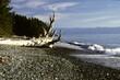 canvas print picture - Der Pazifik an der Westkueste von Vancouver Island. Britisch-Kolumbien, Kanada   --   The Pacific Ocean on the west coast of Vancouver Island. British Columbia, Canada