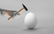 Hand Hold Hammer And Batter White Chicken Egg