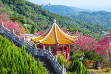 Cherry Blossom And Chinese Pavilion Near Taipei City In Taiwan