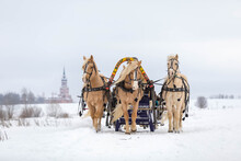 Russian Traditional Fun - Galloping On Three Horses In Winter In A Sleigh. Three Horses Jump Together At High Speed.