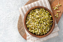 Sprouted Mung Bean In A Wooden Bowl On A Gray Concrete Table Close-up.