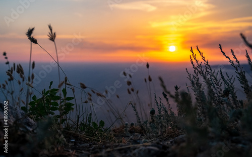 Fotografie, Obraz Field plants grow from the cliff above the cliff against the backdrop of the sea at sunset