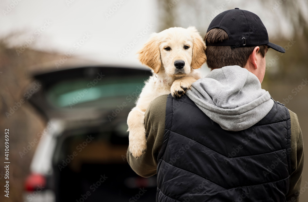 Fototapeta Male Criminal Stealing Or Dognapping Puppy During Health Lockdown