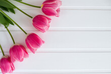 Spring Pink Tulips In The Lower Left Corner On A White Background, Top View, Postcard, Place For Text