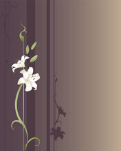Two White Lilies Growing On A Purple And Gold Designed Background. Plenty Of Copyspace.