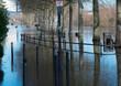 Während des Hochwassers und der Überschwemmung im Februar 2021 in Mainz ragt ein Geländer, sowie Straßenlaternen und Bäume aus dem Wasser des überfluteten Promenadenwegs