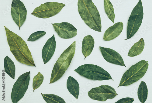 Fototapety, obrazy: Dry laurel leaves on a white background. Aromatic herbs and spices