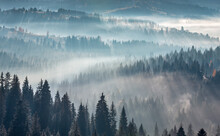 The Air. Light And Shadows In Mist. First Rays Of Sun Through Fog And Trees On Slopes. Morning Autumn Carpathian Mountains Landscape (Ivano-Frankivsk Oblast, Ukraine).
