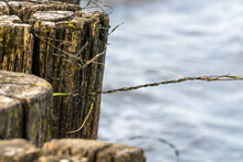 Close-up Of Rotten Pole Forming A Pile Dam At The Beach With Dry Seagrass Fluttering Gently In The Wind Against A Background Of Baltic Sea Rollers Breaking At The Beach