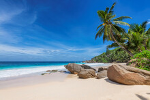 Tropical Sunny Beach With Beautiful Rocks And Coconut Palms On Seychelles.