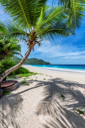 Fotografía Tropical beach with coco palms and the turquoise sea in Caribbean island