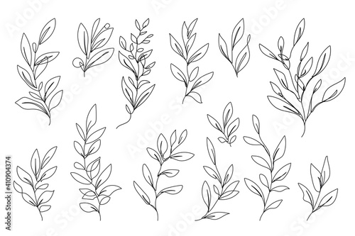 Obraz Vector Set of Hand Drawn Line Art Botanical Elements, Leaves, Flowers. Minimalist Trendy Contemporary Design Perfect for Wall Art, Prints, Social Media, Posters, Invitations, Branding Design. - fototapety do salonu