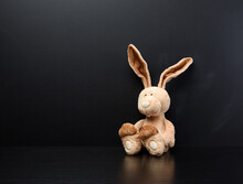 Toy Bunny On A Black Chalk School Blackboard