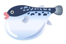 フグ 魚介類 生き物