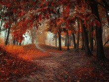 Mystical Morning Forest In Thick Fog In Orange Tones