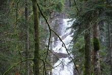 Grande Cascade De Tendon Vosges