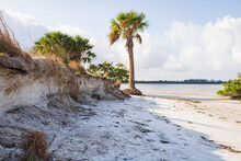 Landscape Of Tampa Bay Under The Sunlight And A Cloudy Sky In Florida, The USA