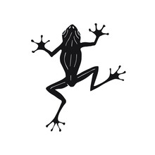 Vector Hand Drawn Doodle Sketch Black Frog Isolated On White Background