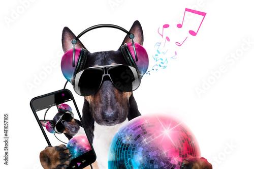 Fototapeta dj disco dancing music dog obraz