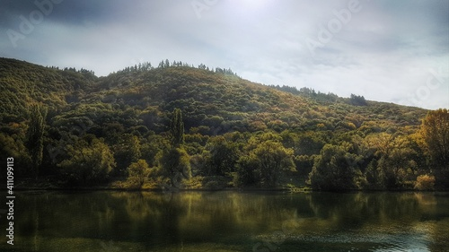 Scenic View Of Lake By Trees Against Sky #411099113