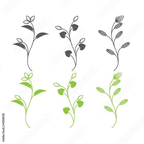 Fotografija floral Herbs and Wild Flowers