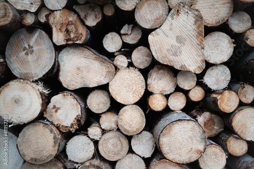 Fotografija Closeup shot of a pile of chopped firewood stock up for winter