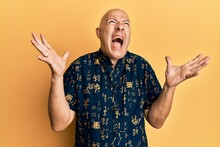 Middle Age Bald Man Wearing Casual Clothes Crazy And Mad Shouting And Yelling With Aggressive Expression And Arms Raised. Frustration Concept.