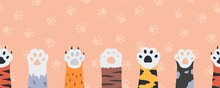 Cat Paws Seamless Wallpaper. Cartoon Funny Kittens Claws And Feet. Cute Limbs Of Wild Or Domestic Animals On Colorful Background With Pet Tracks. Childish Horizontal Pattern, Vector Border For Textile