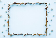 Frame Created From Fresh Fluffy Willow Twigs On Light Blue Table Background. Pastel Color.  Empty Place For Positive, Inspirational, Sentimental Text, Quote Or Sayings. Top Down View. Closeup.