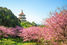 Wuji Tianyuan Temple In New Taipei City, Taiwan.