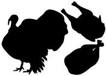 Turkey And Turkey Carcass Set. Vector Image.