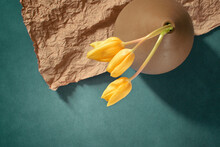 High Angle View Of Yellow Tulips On Table