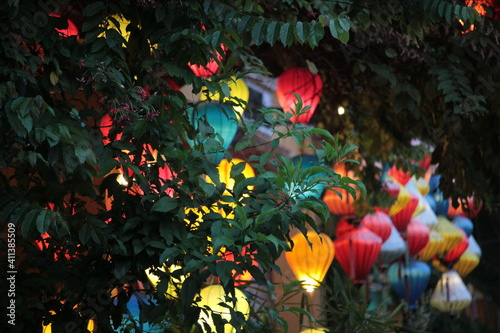 Fototapety, obrazy: Close-up Of Multi Colored Flowering Plants In Park