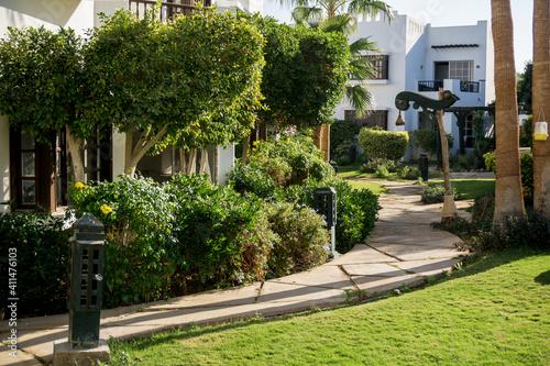 Obraz Luxury landscape design of the summer garden - fototapety do salonu