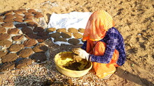 Indian Woman Preparing Cow Dung And Making Dung Cakes For Sacred Festivals. Religious Culture To Make Cow Dung Cakes On Holi Festival In Hindu Religion.