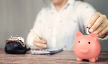 Female Business Woman Doing Administration, Counting And Saving Money With Pink Piggy Bank, Business, Savings,tax,financial Concept Background