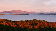 Panoramic Aerial View Of The Isles Of Jura And Mull At Sunrise. Pure Morning Sunlight Above The Rocky Shores, Forest And Hills. Glowing Pink Clouds. Loch Craignish, Crinan Canal, Scotland, UK